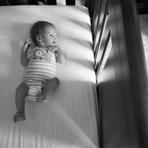 Dublin Newborn Photos