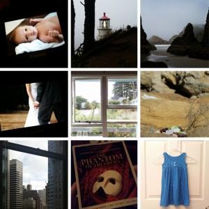 Faye Champlin Studio Instagram Recap