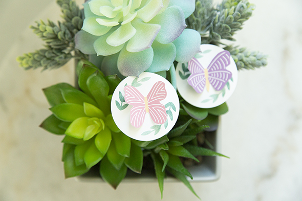 butterfly food tags