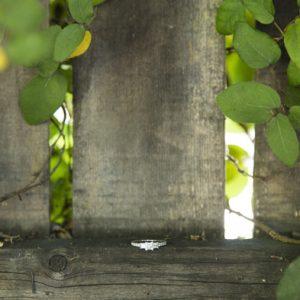 Walnut Creek Engagement Photographer